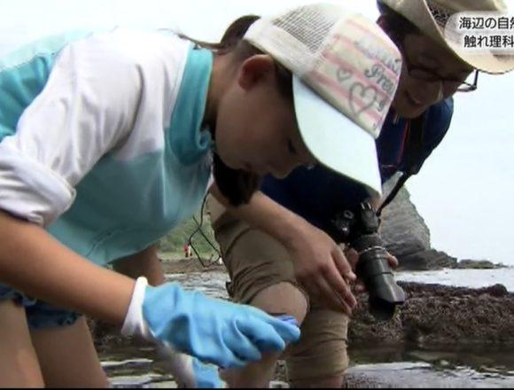 20170716海辺の自然に触れ理科を学ぶ (3)