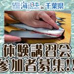 海の魅力-魚捌き192-172