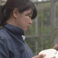 千葉県-C09-s2