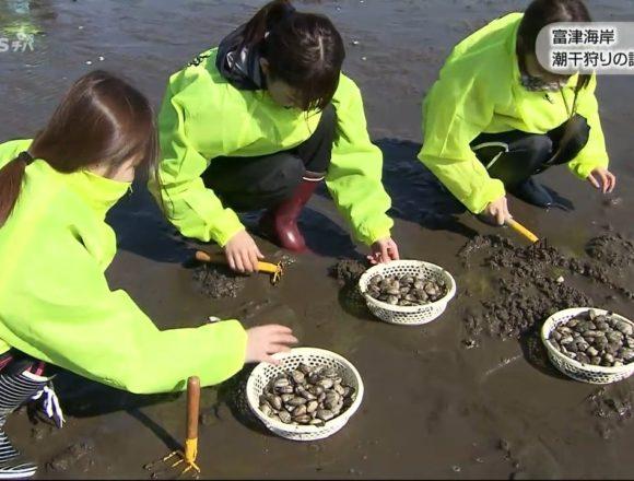 20180220富津海岸潮干狩りの試し堀り (3)