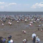 20180504GWは潮干狩りシーズン海岸大にぎわい (3)