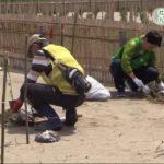 20180512社会貢献活動で九十九里海岸に植樹 (5)