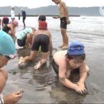 20180712自然に親しもう!富浦っ子が海遊び (5)