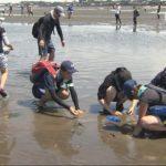 20180827干潟で中学生が生態系を研究 (3)