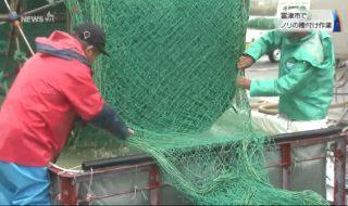 20180921富津市でノリの種付け作業 (5)