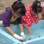 20190715きょうは海の日アジのつかみ取りに挑戦 (2)