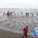 20200308身の入り良好 富津潮干狩り場オープン (3)