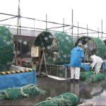 20200925富津市で海苔の種付け始まる (2)